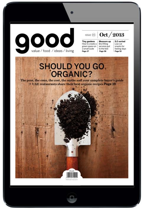good Magazine for iPad. #digitalmagazine